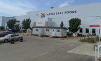 Công ty chế biến thực phẩm Canada dừng xuất khẩu sang Trung Quốc sau khi 2 cơ sở có nhân viên dương tính với COVID-19