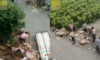 Giang Tô: xe tải chở 10 tấn thịt lợn bị nạn, dân chạy tới cướp 7 tấn