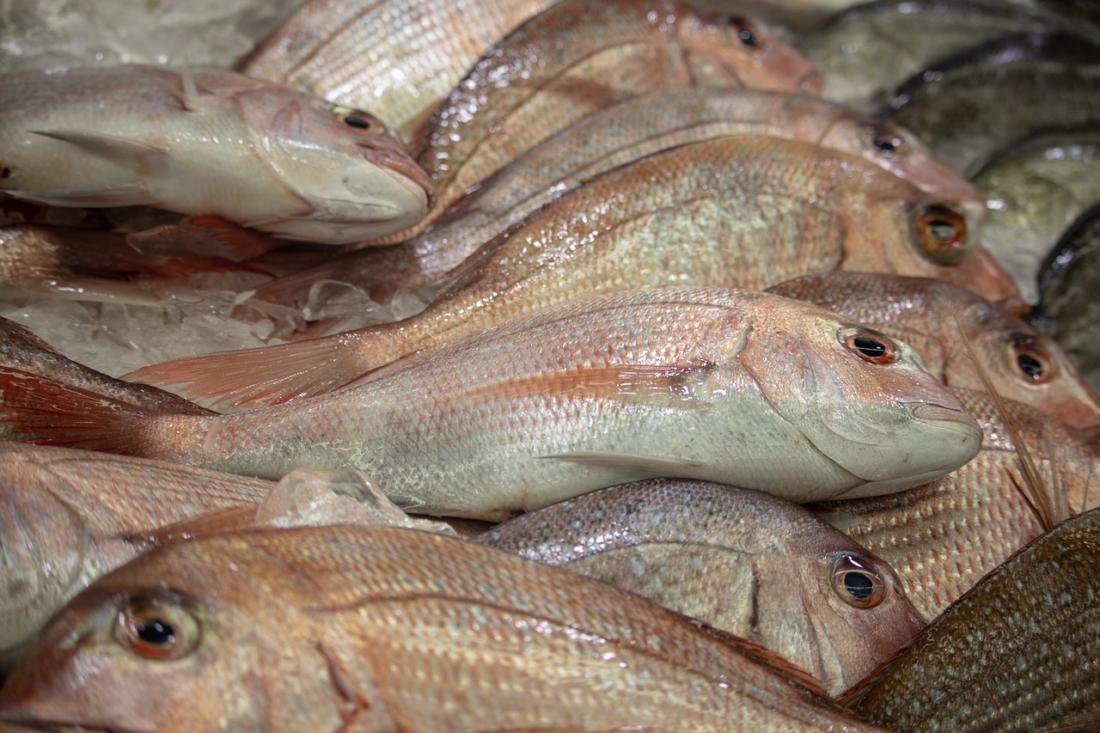 """Suốt một thời gian dài tiêu thụ nguồn cá """"made in China"""" độc hại, người dân Kenya giờ đang phải trả do nhiễm độc kim loại nặng.(Ảnh: pixabay)"""