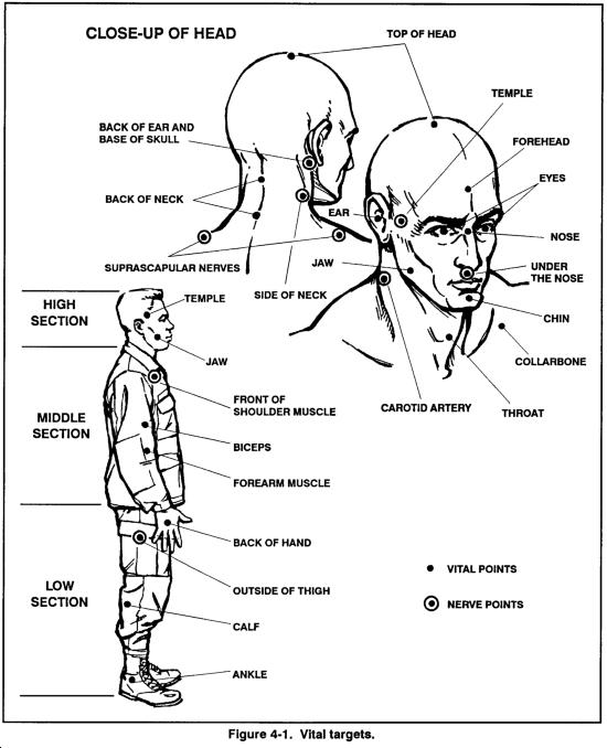 Hình minh họa các mục tiêu (huyệt đạo) quan trọng để sử dụng trong chiến đấu của Quân đội Hoa Kỳ.