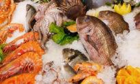 Chuyên gia Trung Quốc chỉ trích chính quyền: Có thể đổ lỗi cho lợn, bò... còn cá thì vô tội