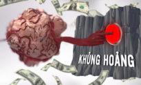 Cơ chế 'đột biến' tế bào ung thư giống hệt cơ chế 'thúc đẩy khủng hoảng tài chính' (Phần 5)