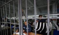 Phạm nhân phải làm việc quần quật như trâu ngựa trong các nhà tù và trại giam ở Trung Quốc