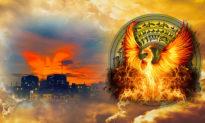 Phượng Hoàng Lửa - Loài chim Thần báo hiệu sự hủy diệt và hồi sinh