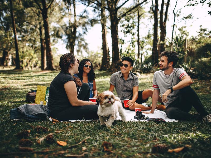 Khi mọi người có một số lượng lớn bạn bè ở độ tuổi 20, các bạn trẻ sẽ cảm thấy hạnh phúc hơn một người chỉ có một vài người bạn thực sự thân thiết.