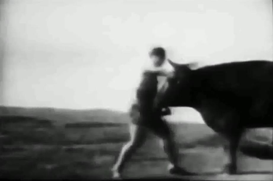 Mas Oyama nổi tiếng với khả năng hạ gục một con bò mộng chỉ với một đòn đánh vào mặt.