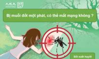 Bị muỗi đốt có thể gây tử vong và 2 cách để phòng tránh sốt xuất huyết