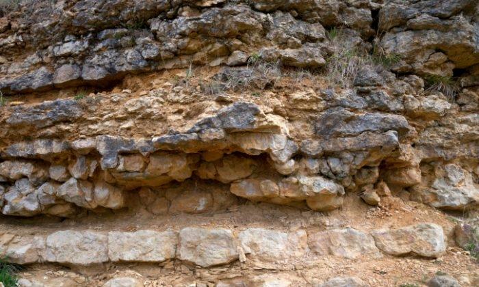 Bức ảnh chụp phiến đá vôi: Một số người cho rằng, những vật thể nhân tạo được phát hiện dưới lớp đá vôi vào thế kỷ 18 chính là bằng chứng cho thấy con người đã xuất hiện trên trái đất từ hàng triệu năm về trước và thậm chí còn có nền văn minh phát triển vượt bậc.