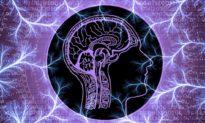 Tại sao một nhà khoa học 'thiên tài' lại cho rằng ý thức của chúng ta bắt nguồn từ cấp độ lượng tử