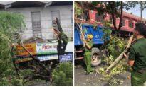 Thêm 2 người ở Thừa Thiên Huế tử vong do bão số 5