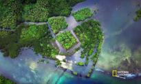 Những ngôi mộ bí ẩn ở đáy Thái Bình Dương: Người tiết lộ đều đột tử
