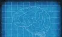 Chính quyền Trung Quốc nghiên cứu công nghệ 'khống chế não bộ' hơn 2 thập kỷ