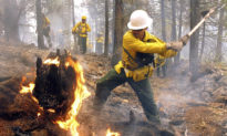 Hơn nửa triệu người phải sơ tán do cháy rừng ở Mỹ - Ai là kẻ đứng sau phá hoại?