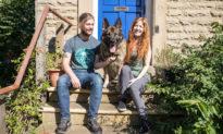 Kỳ lạ, chú chó tự 'tẩu thoát' và tìm được đường trở về nhà sau 14 tháng bị bắt trộm
