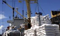 Gạo Việt Nam thẳng tiến EU, chạm mức giá cao nhất trong lịch sử