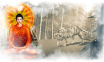 Hai nghìn năm trước, Đức Phật đã kể một câu chuyện cho bạn biết nhân sinh là gì