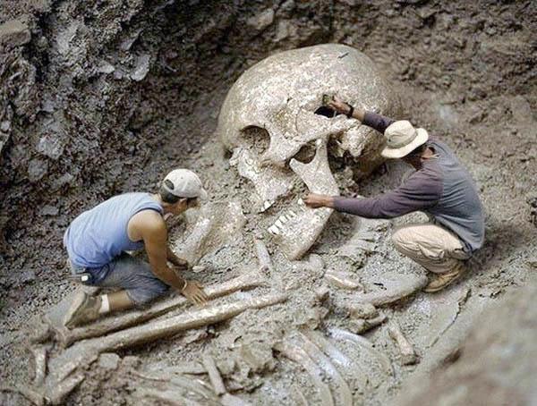 Một bộ xương người khổng lồ được phát hiện ở Nam Phi