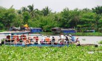 TP. HCM cảnh báo cá sấu xuất hiện trên sông Sài Gòn