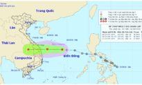 Áp thấp nhiệt đới đang hướng về Đà Nẵng - Khánh Hòa, miền Trung mưa dữ dội