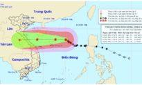 Bão số 8 có thể đột ngột giảm 5 cấp khi tiến sát Hoàng Sa, Việt Nam mưa khắp 3 miền