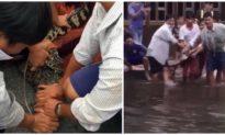 Bắt được cá sấu xổng chuồng trên sân nhà người dân ở Cà Mau