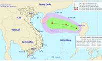 Bão số 6 vừa qua, Biển Đông lại hình thành một áp thấp nhiệt đới mới