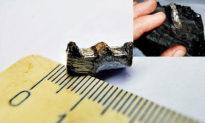 Bánh răng 300 triệu năm tuổi được tìm thấy ở Nga, đã từng tồn tại một nền văn minh trước khi con người xuất hiện trên Trái đất?