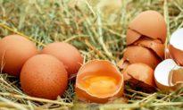 Những thay đổi trong cơ thể khi bạn ăn trứng mỗi ngày