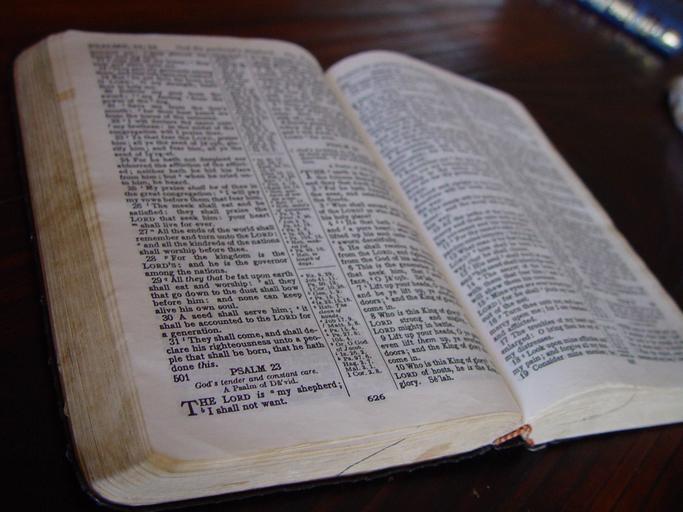 Weissmandl tuyên bố đã thu được nhiều lời tiên tri đáng sợ từ Kinh Thánh thông qua cách đọc này. (Snappy Goat)