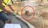 [Video] Nhói lòng cảnh cậu bé chới với bơi theo thuyền để xin đồ cứu trợ cho gia đình