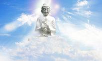 """Đức Phật nói """"Đời là bể khổ"""": Tại sao con người sinh ra là đã khổ?"""