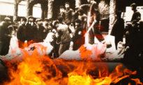 Báo ứng ly kỳ thời Cải cách Ruộng đất và Cách mạng Văn hóa
