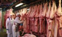 Hại đơn hại kép từ thương chiến: Giá thịt heo Việt Nam đang tăng vì xuất lậu qua biên giới