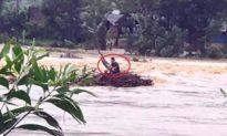 'Thót tim' giải cứu 2 người đàn ông bám đống rác, đu ngọn cây… mắc kẹt giữa lũ dữ