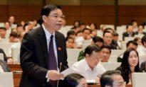 Bộ trưởng nói 'rừng tự nhiên tăng 1,3 triệu ha', đại biểu Gia Lai nghi vấn: 'đáng mừng nhưng thấy sai sai'