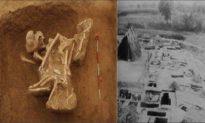Ngôi mộ cổ tiết lộ bí mật cái chết của 32 người con của Tần Thủy Hoàng