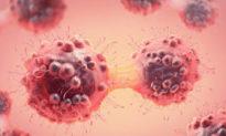 Đài Loan phát triển loại kháng thể có thể tiêu diệt trực tiếp tế bào ung thư - đầu tiên trên thế giới
