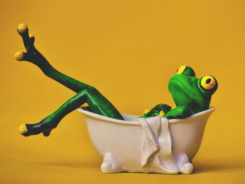 Nhưng nếu thả ếch vào nước lạnh và làm ấm nước từ từ, bạn sẽ thấy ban đầu ếch sẽ bơi thoải mái trong nước.