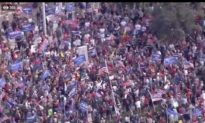 """Người dân ủng hộ TT Trump tại các thành phố ở Mỹ: """"Chúng tôi sẽ không dừng lại!"""""""