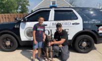 Cậu bé gây quỹ tặng hơn 200 chiếc áo khoác chống đạn cho chó cảnh sát K-9