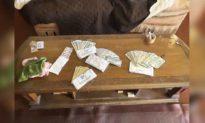 Tìm thấy 10.000 USD cất giấu trong phòng khách, nhà đầu tư bất động sản hảo tâm trả lại cho chủ cũ