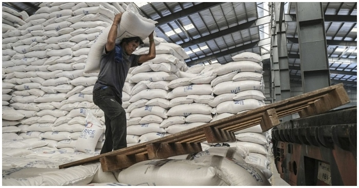 Giá gạo trong nước quay đầu giảm nhẹ, giá xuất khẩu cao nhất 9 năm