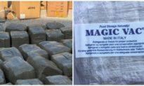 Hơn 665 kg cần sa được ngụy trang, giấu trong container ở Hải Phòng
