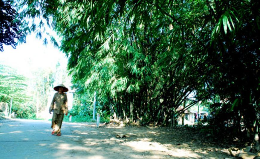 Bí quyết sống lâu của làng trường thọ Trúc Lâm, cố đô Huế