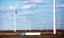 Nhà đầu tư Trung Quốc mua một trang trại gió rộng hơn 500 km² gần căn cứ quân sự Texas