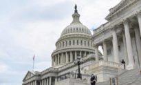 Nhóm Dân biểu đảng Cộng hòa mới đắc cử thúc giục Pelosi điều tra các bất thường bầu cử
