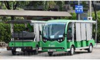 TP. HCM đề xuất kéo dài thời gian thí điểm sử dụng xe buýt điện