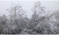 Rét đậm, rét hại bao trùm toàn miền Bắc, đỉnh Mẫu Sơn -1,4 độ