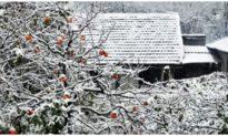 Không khí lạnh tăng cường, Bắc bộ tiếp tục rét đậm, rét hại, vùng núi cao sẽ có mưa tuyết