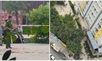 Chi cục trưởng Chi cục Thi hành án dân sự quận Bình Tân rơi lầu, tử vong ở Chung cư Carina